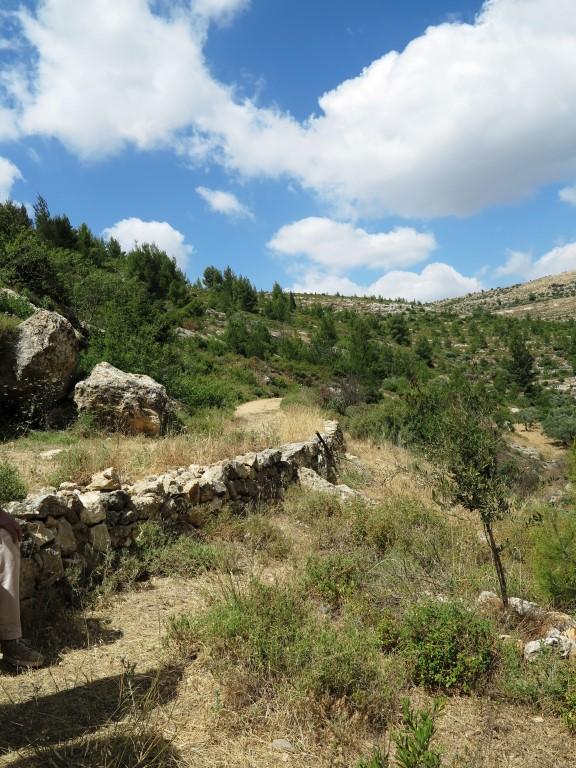 Wanderung im Battir-Tal