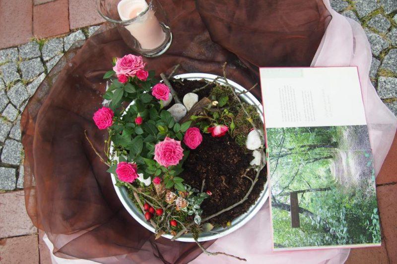 Kreislauf der Natur, blühen und vergehen