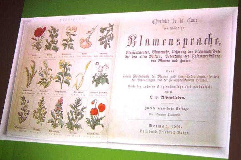 Blumensprache - früher bis heute