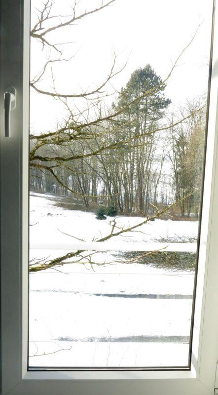 Blick aus dem Fenster des Vortragsraums