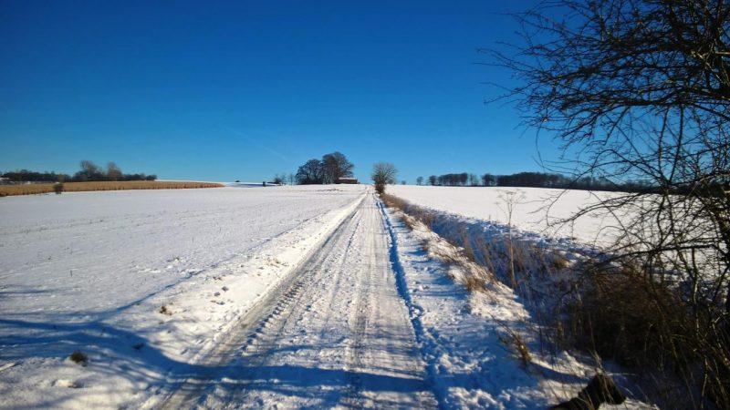 Der tägliche Spaziergang in der Winterlandschaft