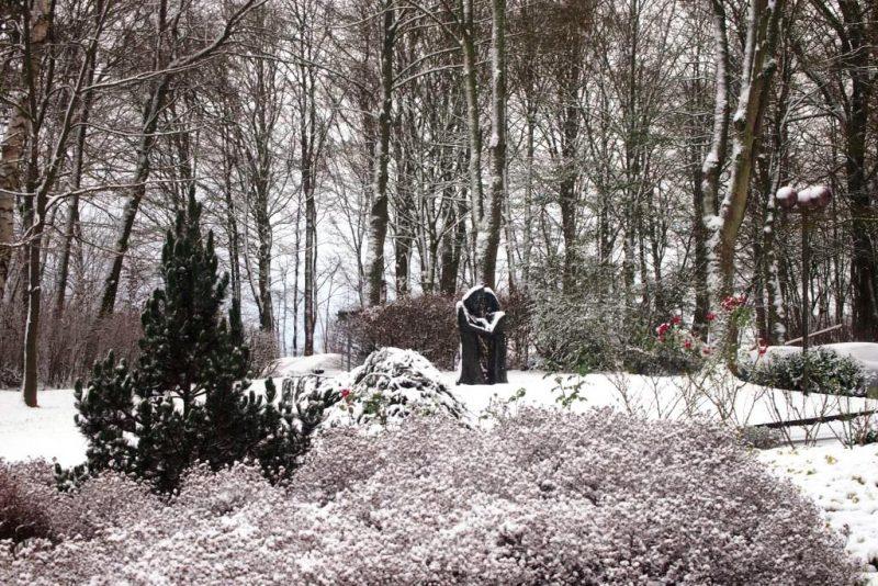 Die schneebedeckte Hegge