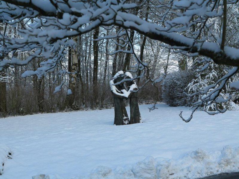 Für ein paar Tage war die Hegge mit Schnee bedeckt