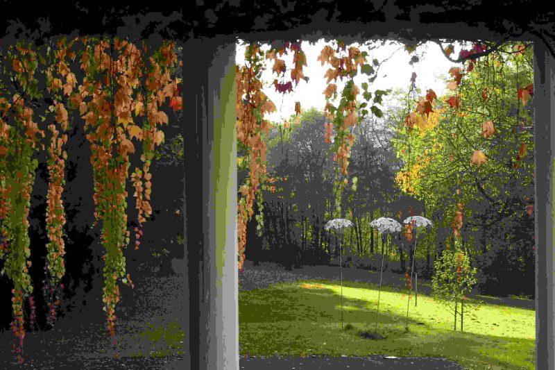 Der Hegge-Park...eine grüne Oase