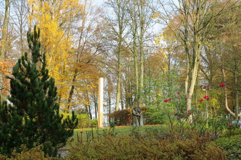 Sonnenstrahlen im November tauchen den Hegge-Park in ein besonderes Licht