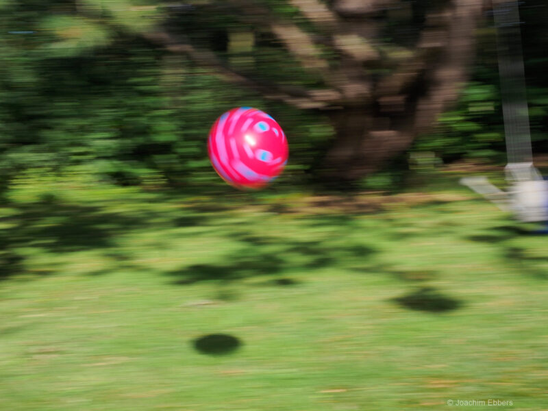 Das Lieblings-Fotoobjekt: Der rote Ball (©Foto: J. Ebbers)