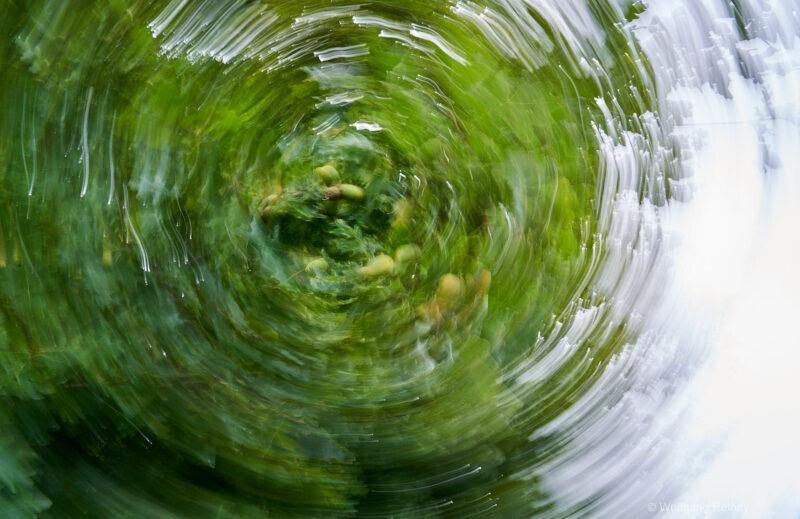 """""""Malen"""" mit der Kamera (©Foto:W. Hethey)"""