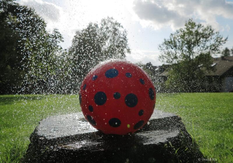 Das Lieblings-Fotoobjekt: Der rote Ball  (©Foto: G. Bär)