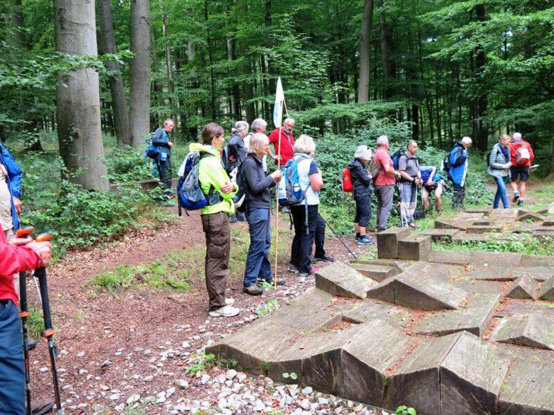 Führung durch den Friedwald